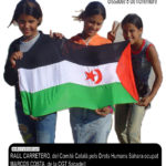 cartell jornada Sàhara