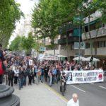 Manifestació 17M pel matí
